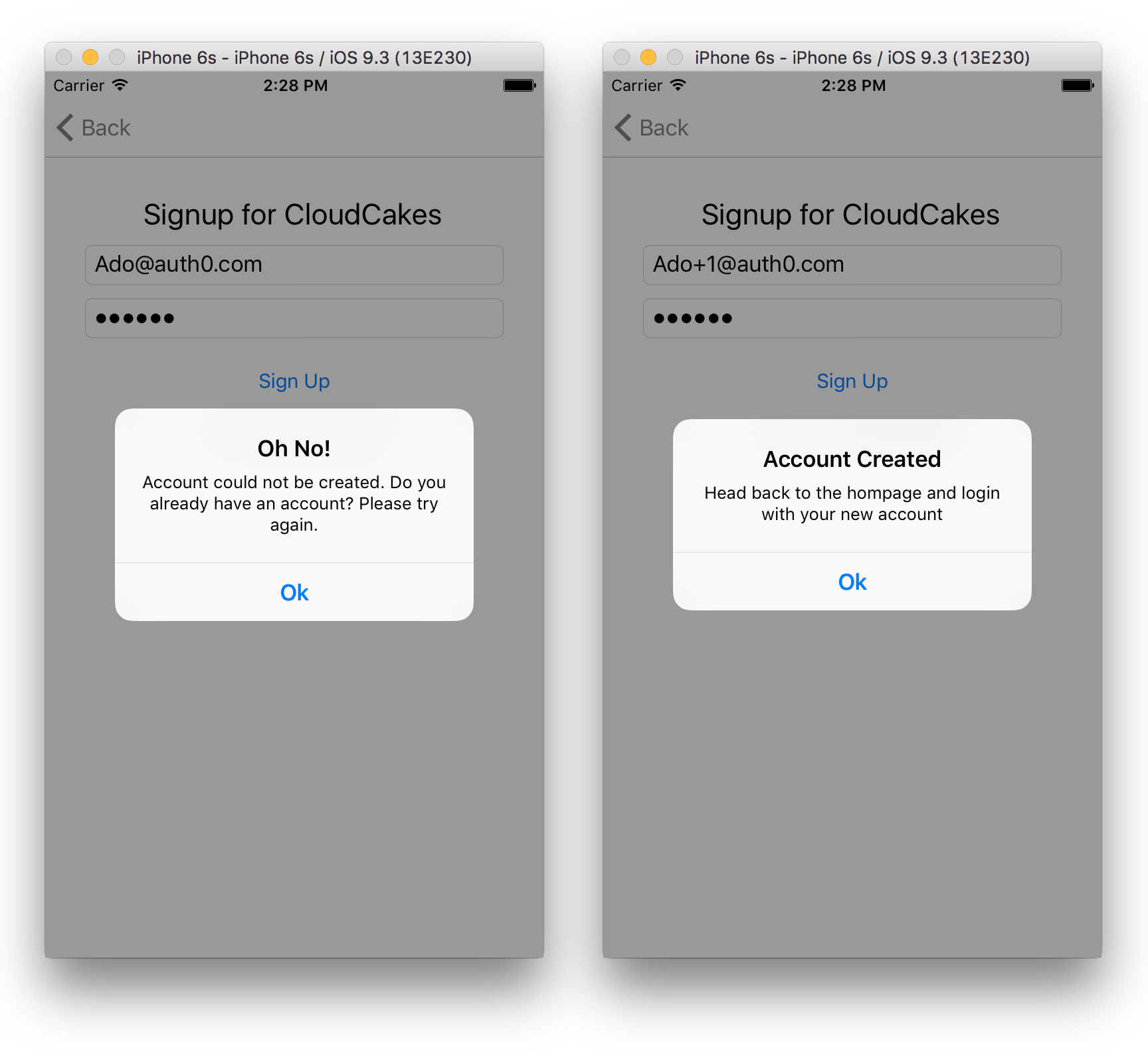 CloudCakes Signup Error and Success States