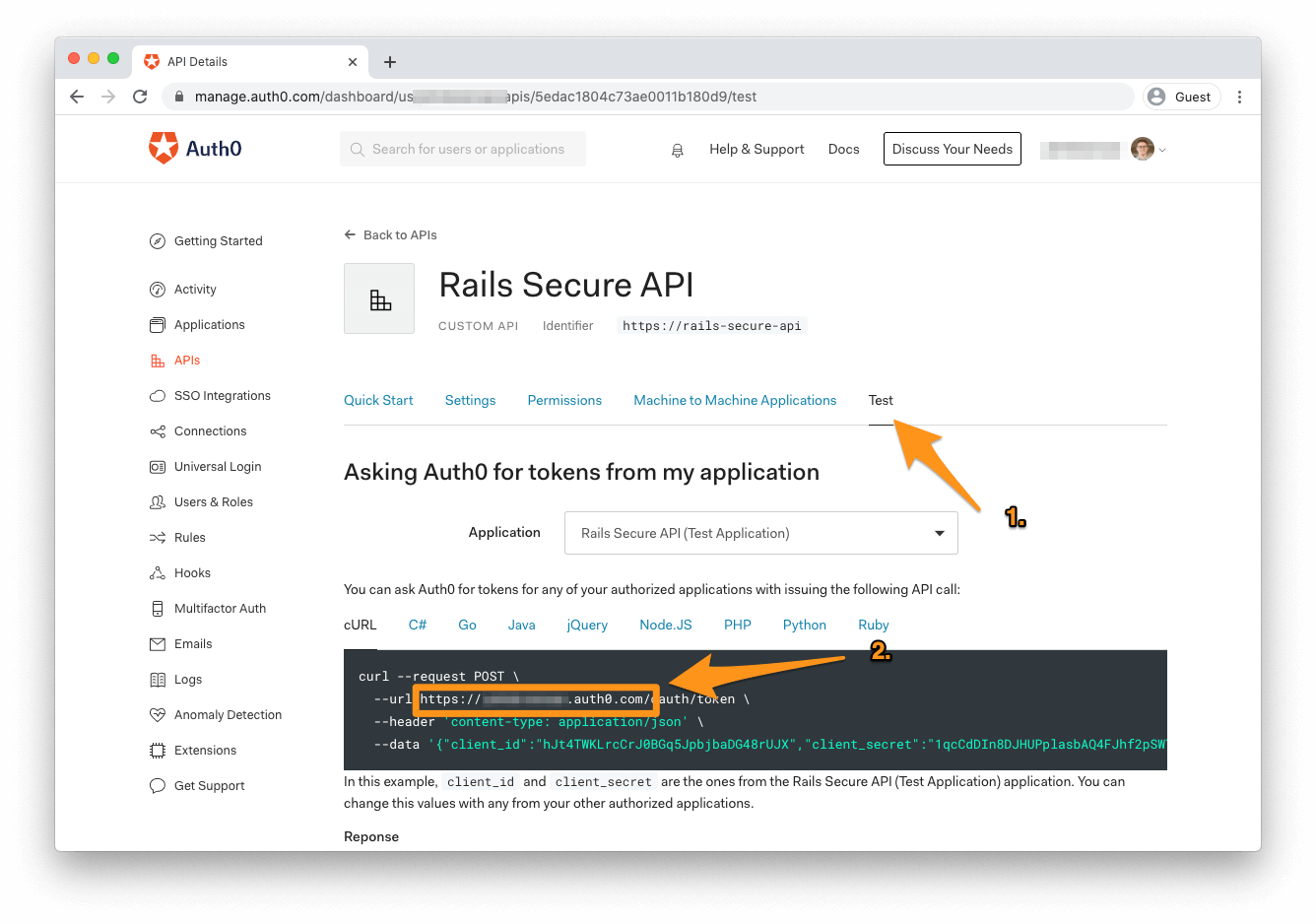 finding Auth0 Domain in test section of API