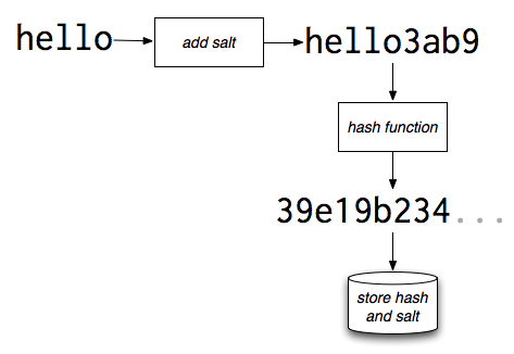Password salting and hashing