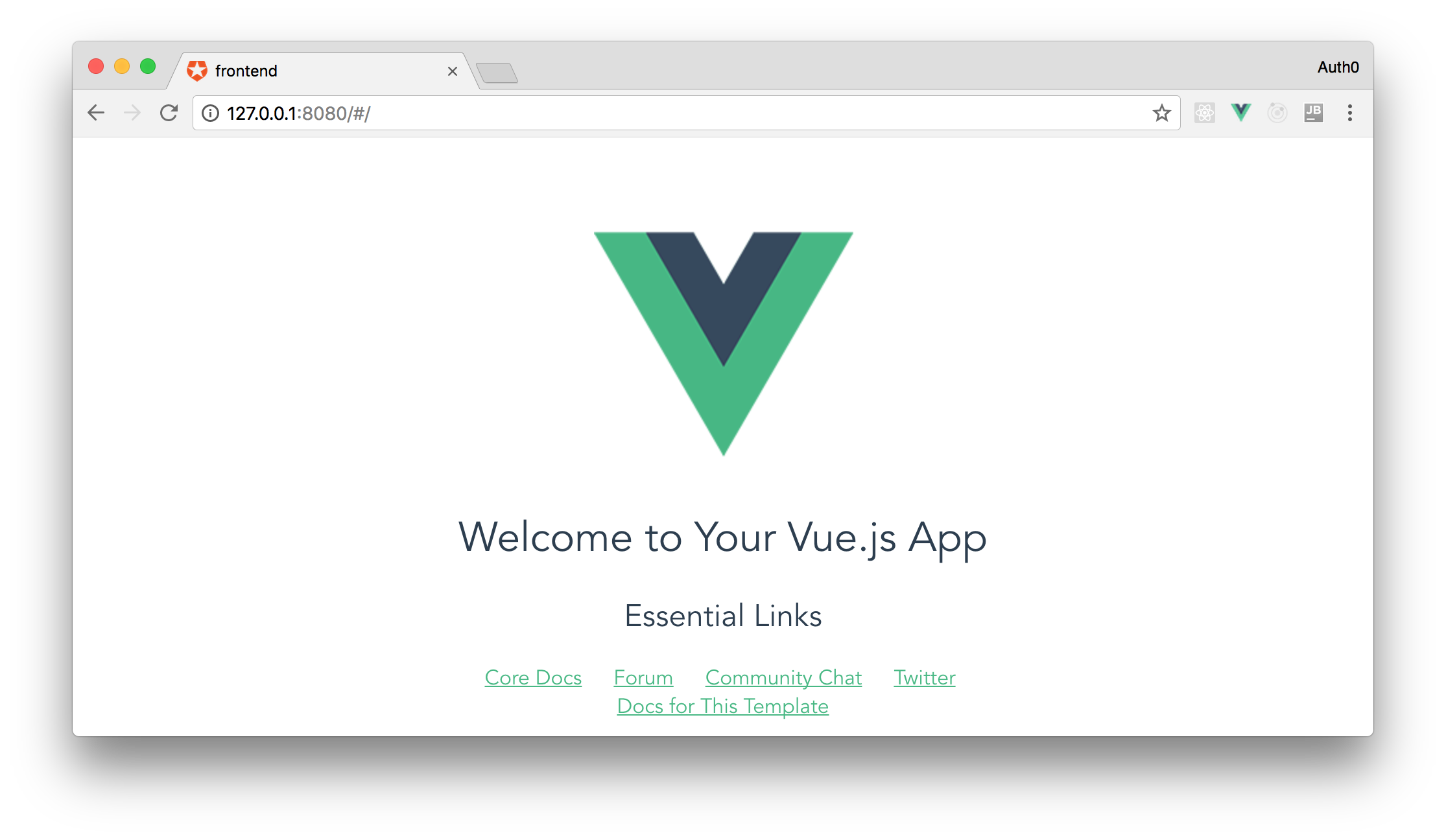 Vue.js localhost basic application