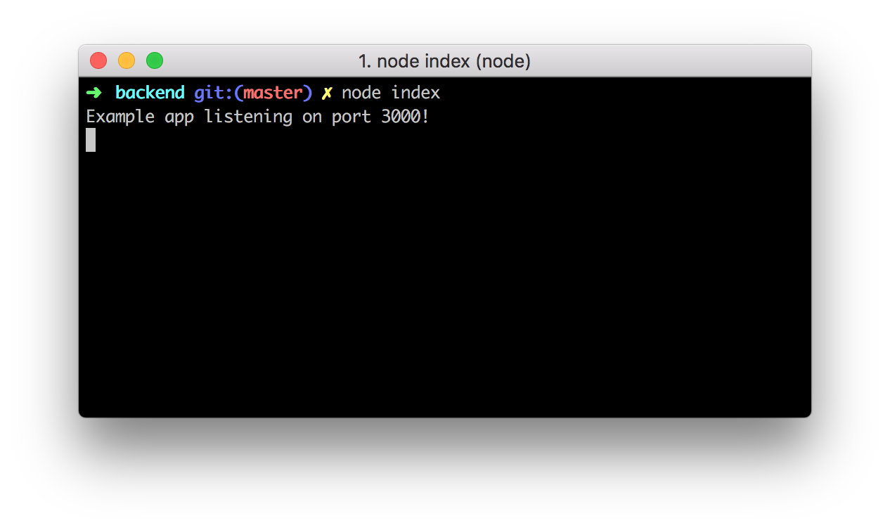 Running the Node.js Resource Server locally.