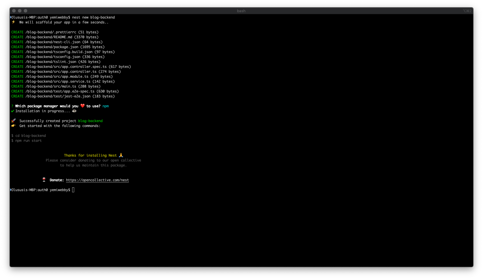 Terminal view of installing Nest.js
