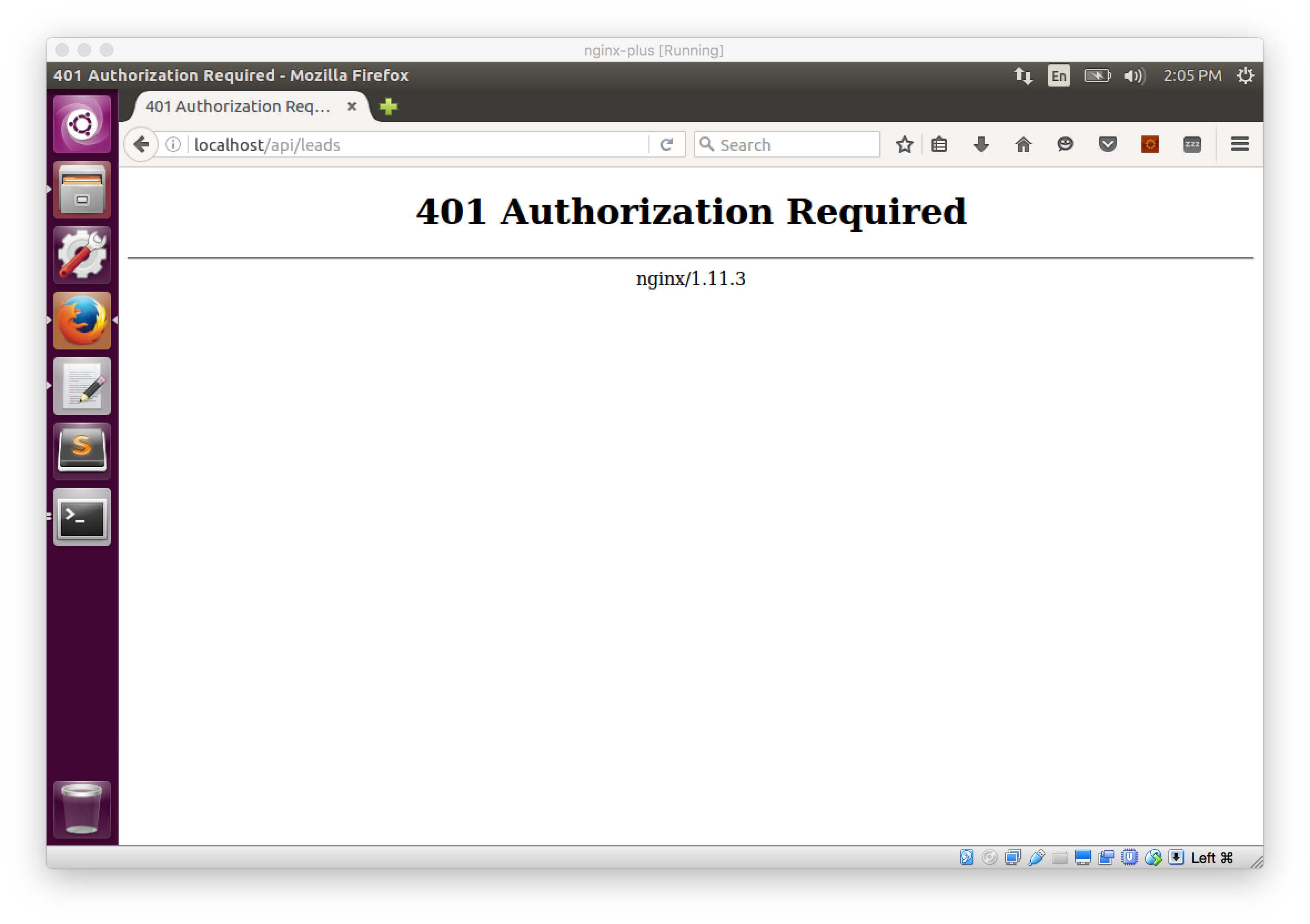 Unauthorized NGINX Plus request