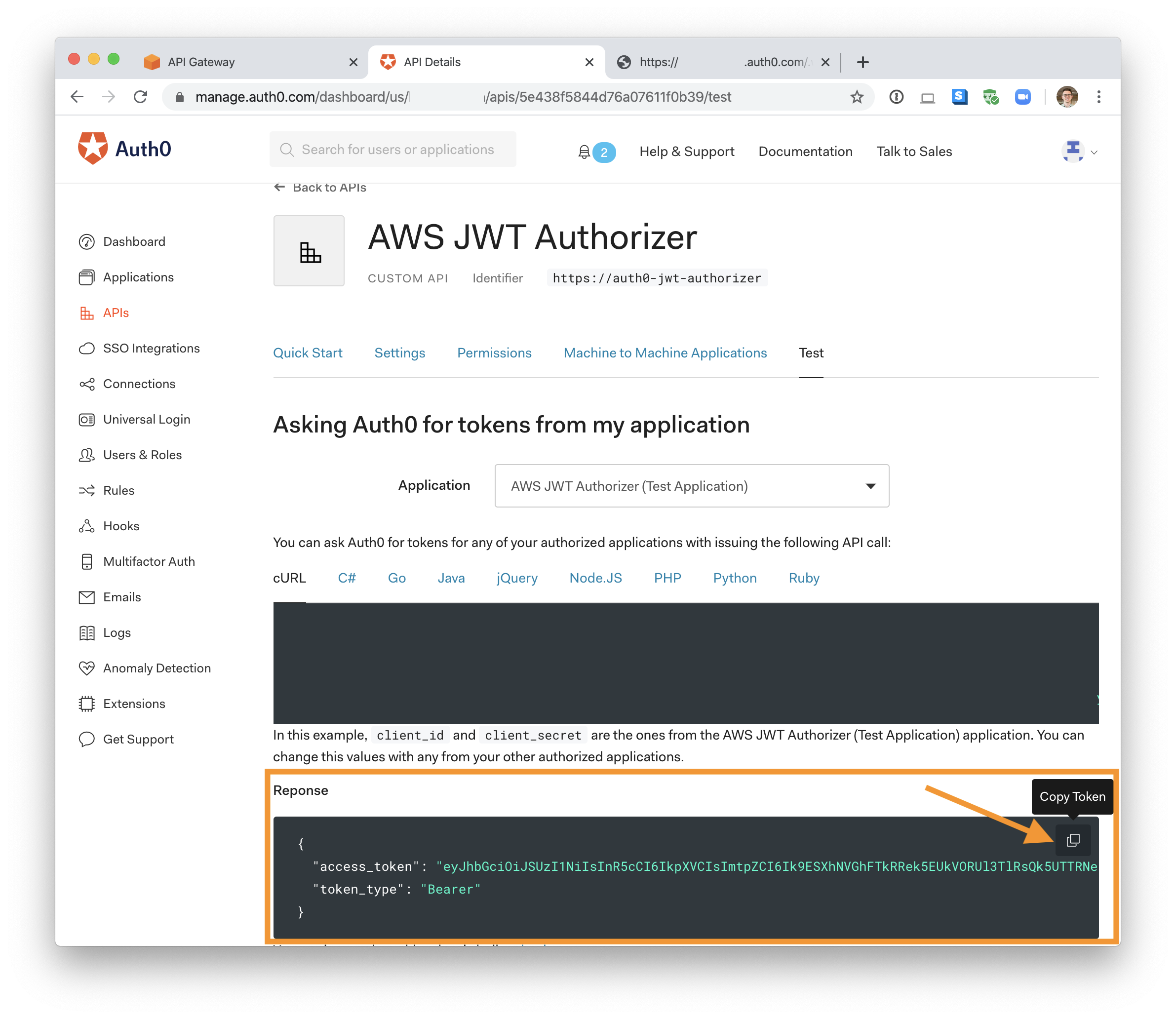 The access_token property from Auth0 test section