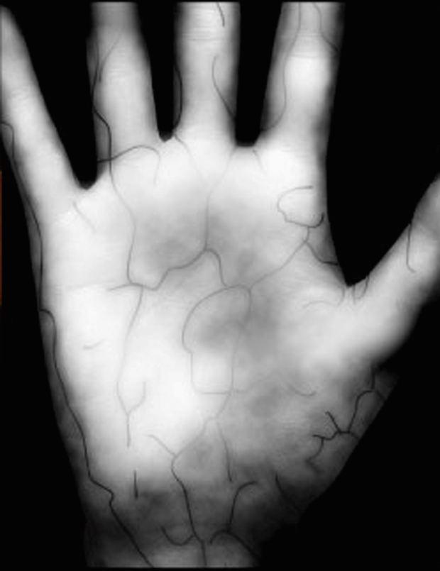 Palm scan