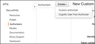 API nav area to select authorizers