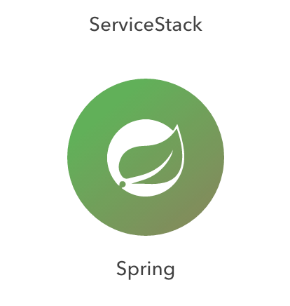 Java Spring Security